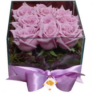 Aquário Rosas Lilas