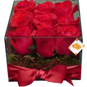 Aquário Rosas Vermelhas