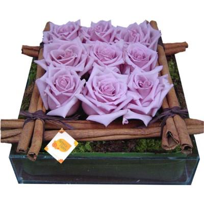 Cercado Rosas Lilas e Canela