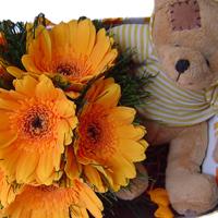 flores-presentes-amizade