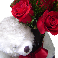 flores-presentes-pelucia