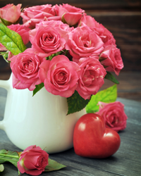 significado das rosas