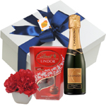 Presente homem - chocolate ,cravos e chandon