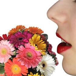mulheres gostam de receber flores