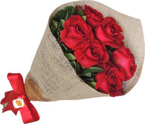 6 opções de rosas colombianas vermelhas