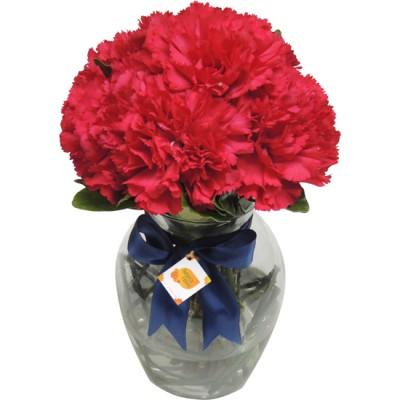 Flores para homem - Cravos