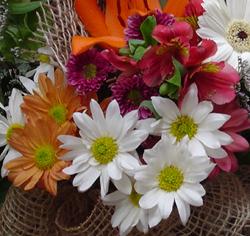 cestas , bouquet e arranjos com flores do campo ou campestres